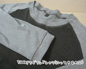3WayラグランTシャツ(にっとやまのこ)